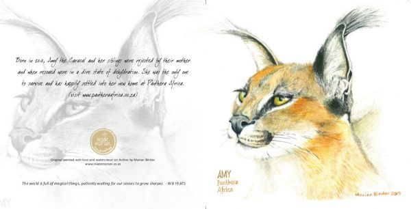 amy-the-caracal-card-made-marian