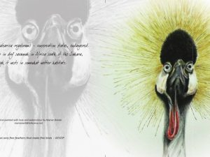 crowned-crane-card-made-marian