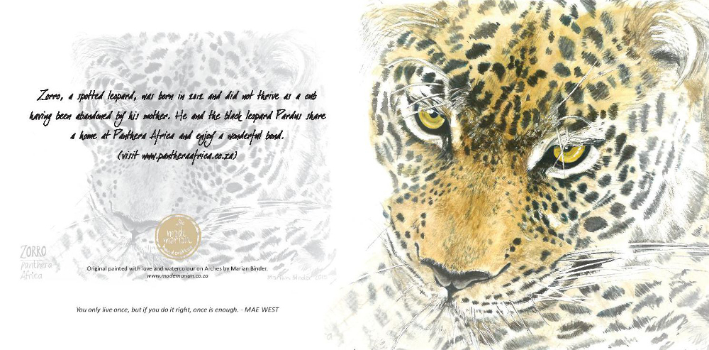 zorro-the-leopard-card-page-001_compressed