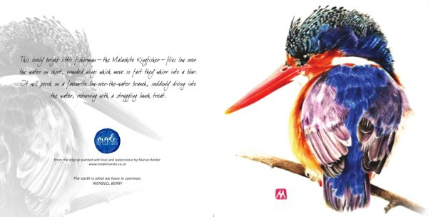 Malachite Kingfisher Card RR_MadeMarian