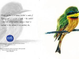 Little bee-eater Card RR