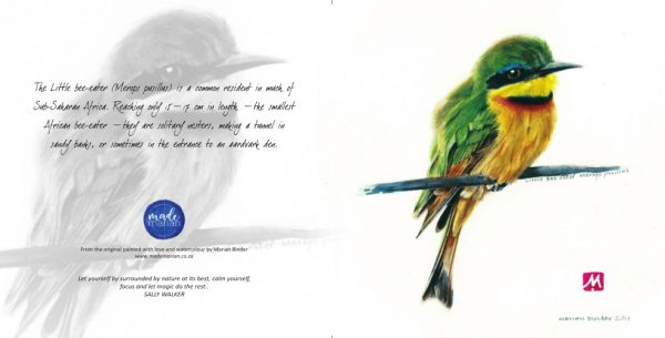 Little bee-eater Card RR