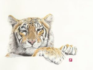 Arabella - Tiger Print - MadeMarian Print - PantheraAfrica Big Cat Artwork