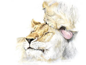 Achilles and Jubartus - Lions - MadeMarian Prints - Panthera Africa Big Cat Artwork