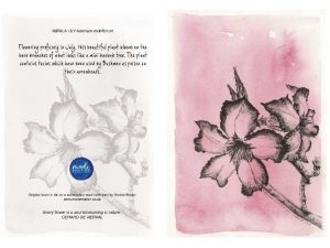 Impala Lily 150MM X 104MM (A6)greetings card MadeMarian Buy Online-min