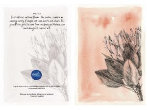 Protea 150MM X 104MM (A6)greetings card MadeMarian Buy Online-min