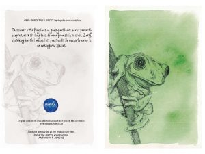 Tree Frog 150MM X 104MM (A6)greetings card MadeMarian Buy Online-min