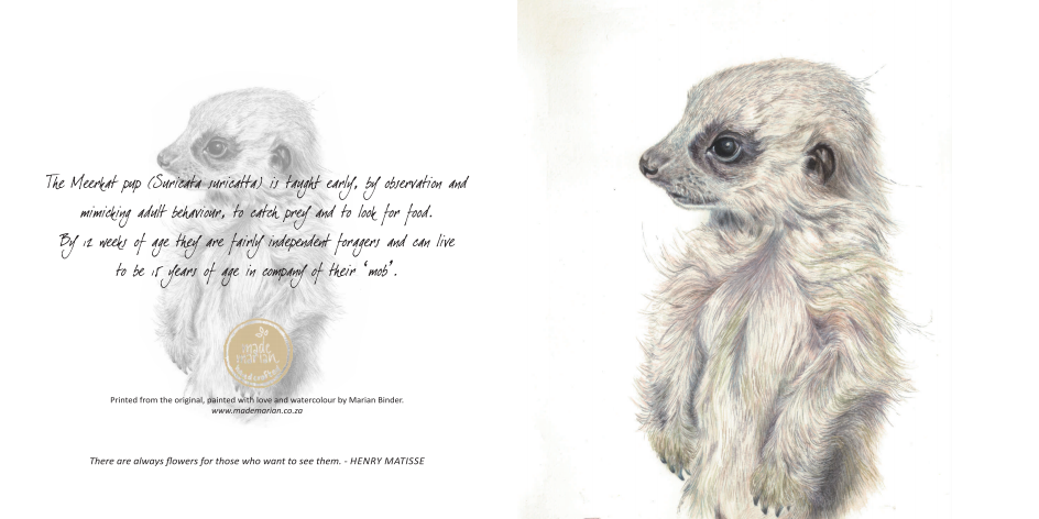 babymeerkat art card mademarian